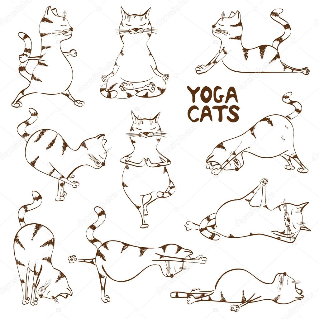 Funny sketch cat doing yoga position — Stock Vector ...