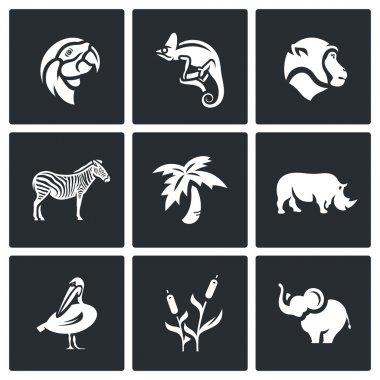Vector Set of Africa Animals Icons. Parrot, Chameleon, Monkey, Zebra, Palm, Rhinoceros, Pelican, Reed, Elephant.