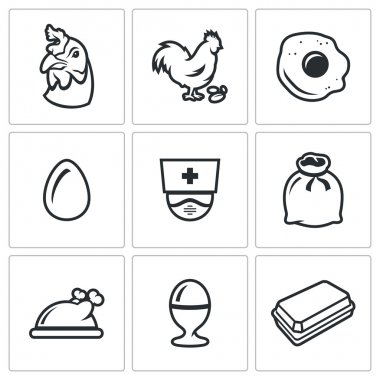 Farm Chicken Bird icon Isolated on a white Background icon