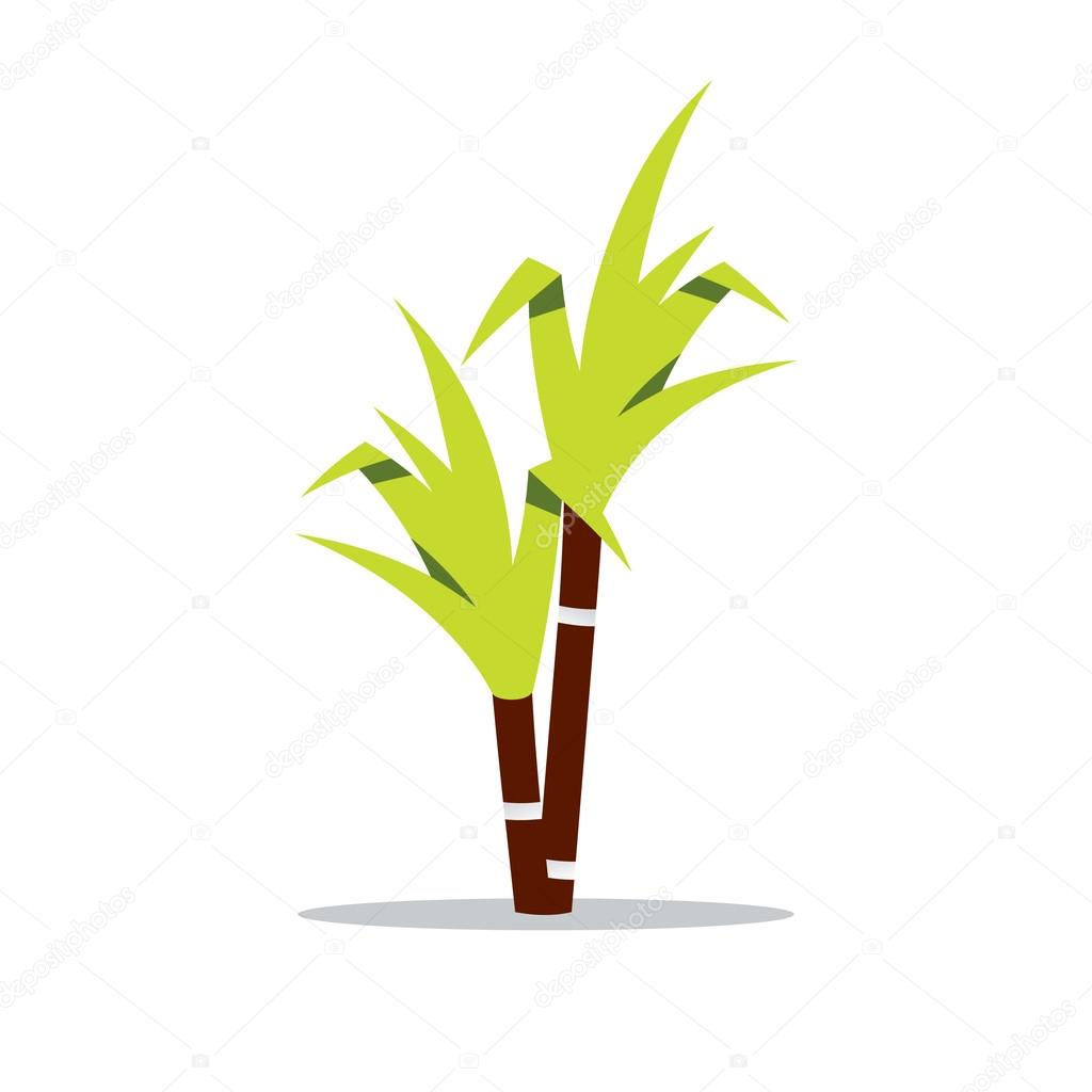 Vector Sugar cane Cartoon Illustration.