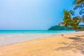 Krásné tropické moře a písečná pláž