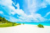 Fotografie Krásný ostrov Maledivy