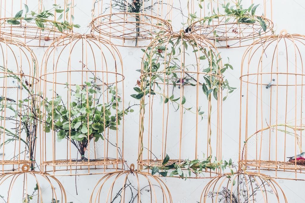 Vogel nesten decoratie op muur u2014 stockfoto © mrsiraphol #114546174