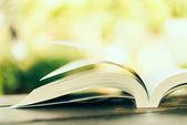 jedna otevřená kniha