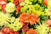 ročník květinové pozadí