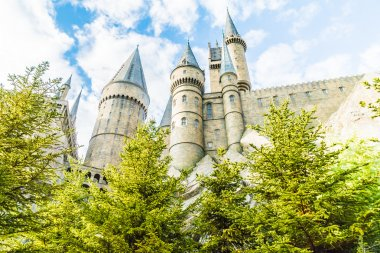 Hogwarts School of Witchcraft