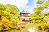 Fotografia Tempio Ginkakuji a kyoto