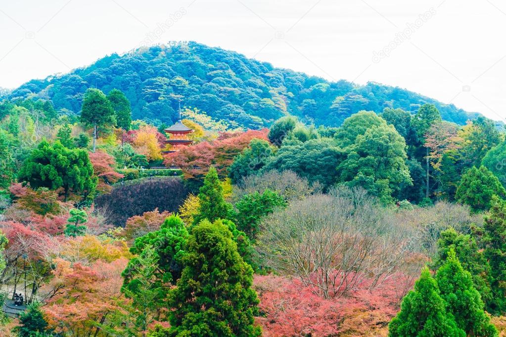 Beautiful Architecture in Kiyomizu temple