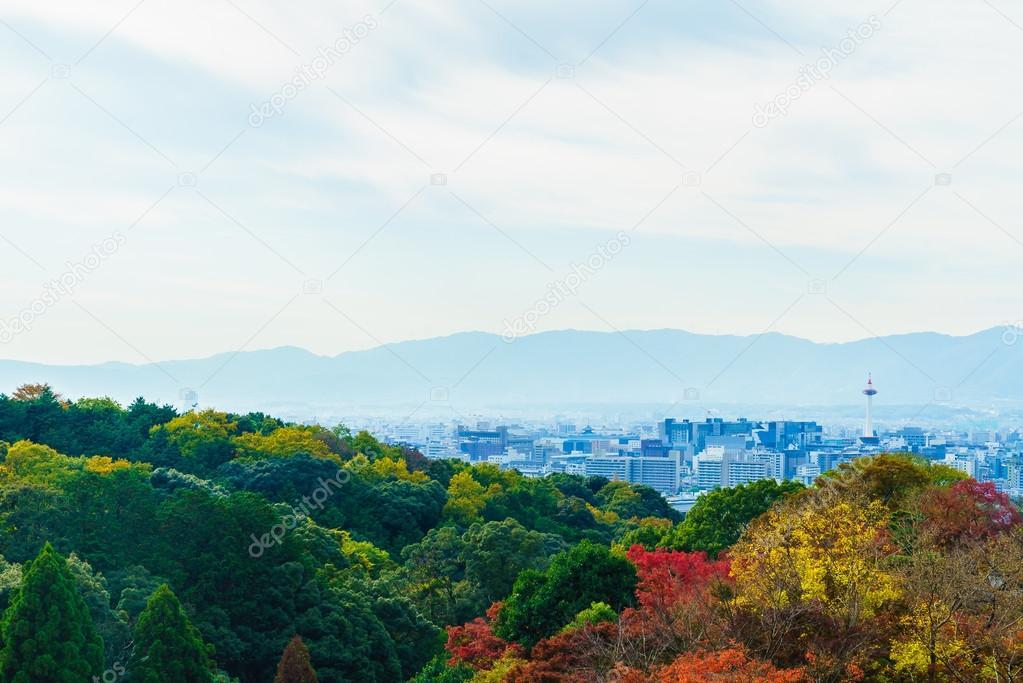 Architecture in Kiyomizu temple