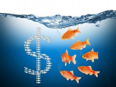 Fisch speculation concept