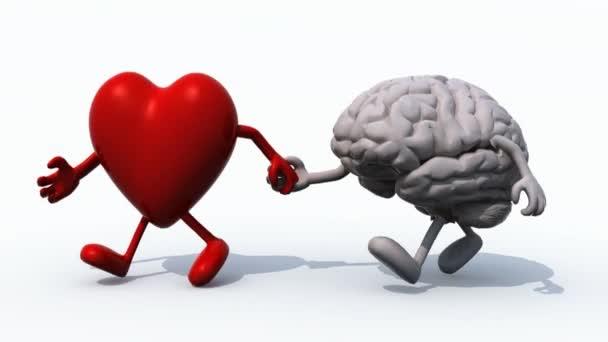 srdce a mozku, které ruku v ruce