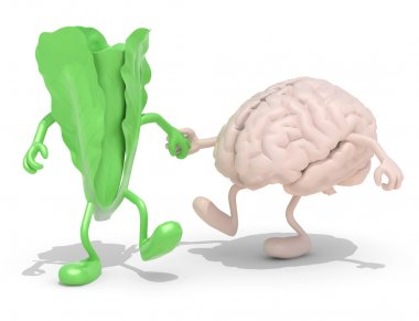lettuce and brain that walking hand in hand