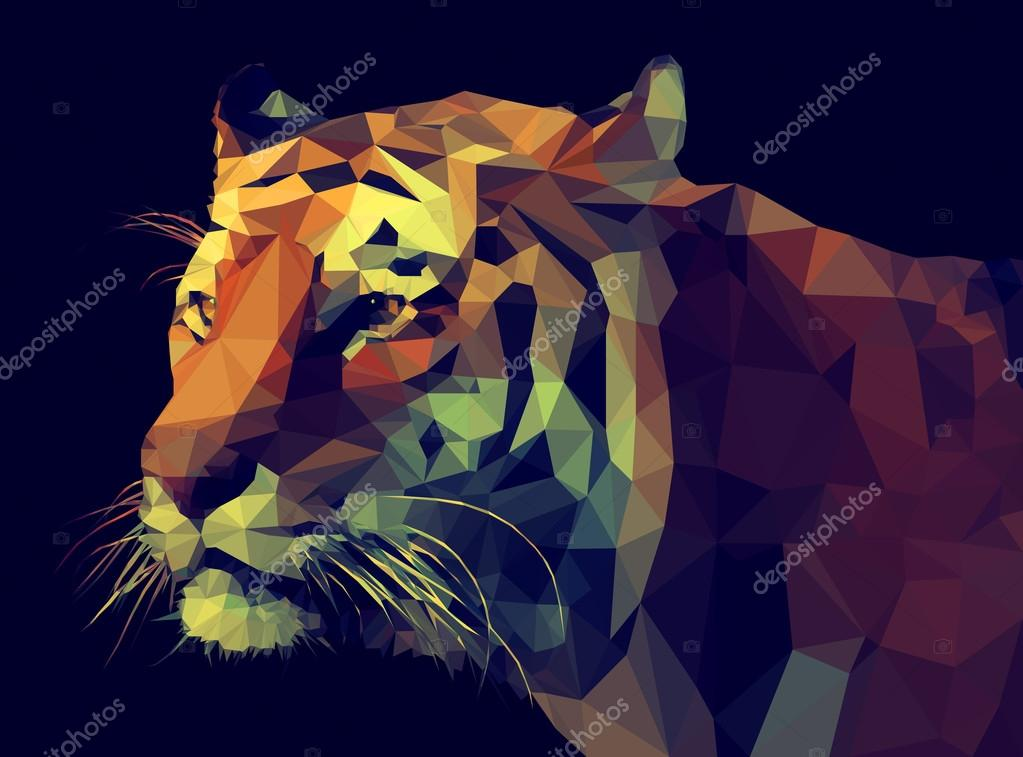 Tiger illustration