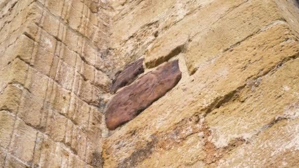 Hnědý kámen detailní záběr na starobylou kamennou zeď se sloupem starožitného kostela