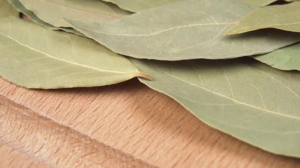 Seasoning bay leaf on a wooden surface macro shot. Dolly. Close up. Bay Laurel Laurus Nobilis