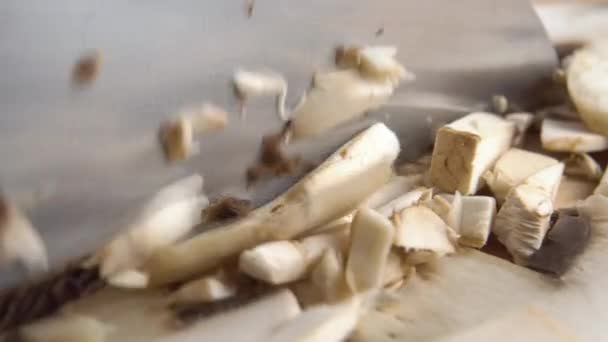 Einen rohen Champignon mit einem Küchenmesser schneiden. Makro. Extreme Nahaufnahme