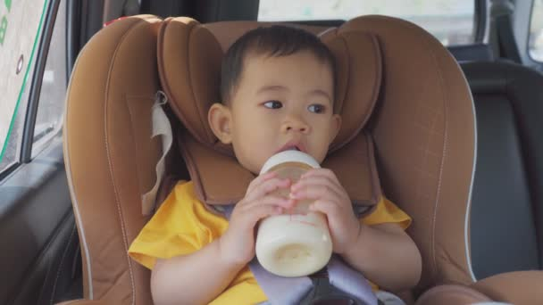 Little boy children drinking milk from a bottle on a car seat in the car.