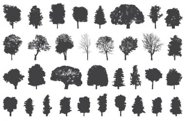 set of isolated trees silhouettes