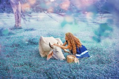 Digitally edited photo of magical woman caring of cow in blue colors stock vector