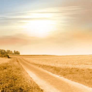Field path in warm sunlight in vintage style - idyllic landscape - peaceful background - rural scenery - picture with soft oil paint filter