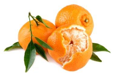 Mandarins peeled and whole on white