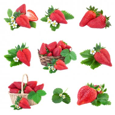 Strawberry Collection. Fresh Berry on white.