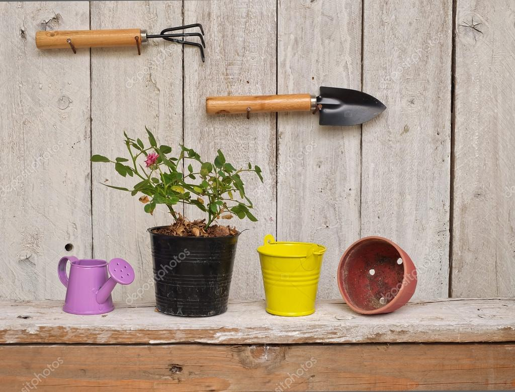 Gardening concept with vintage style