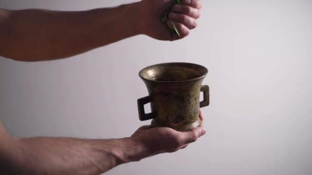 A guy adds tarragon, to a copper bowl, prepares a cough tincture, medicinal herbs, white background