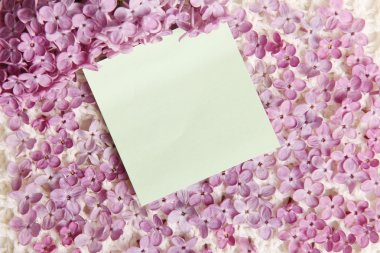 Sticker Love Message On Lilac Flowers Surface