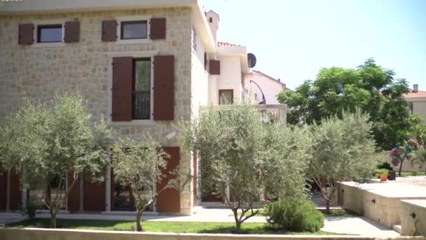Schöne sonnige Villa mit Pool und Olivenbäumen in Montenegro