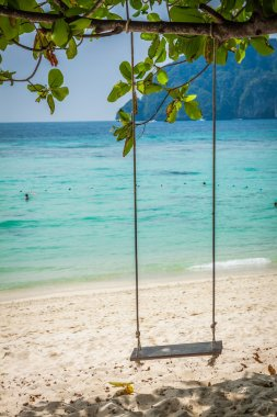 Swing hang from coconut tree over beach, Phi Phi Island, Thailan