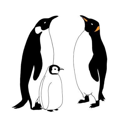 Penguin family illustration