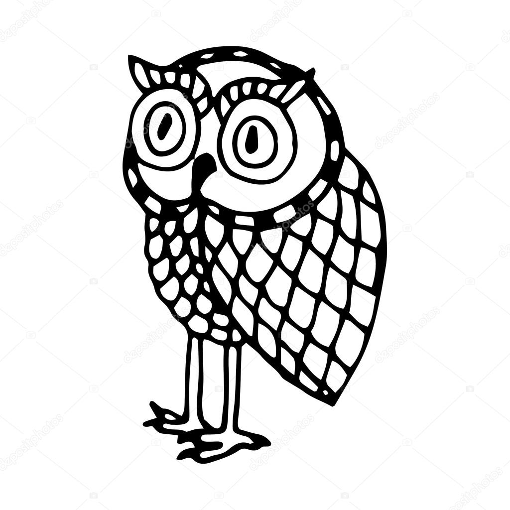 Black and white funny owl illustration