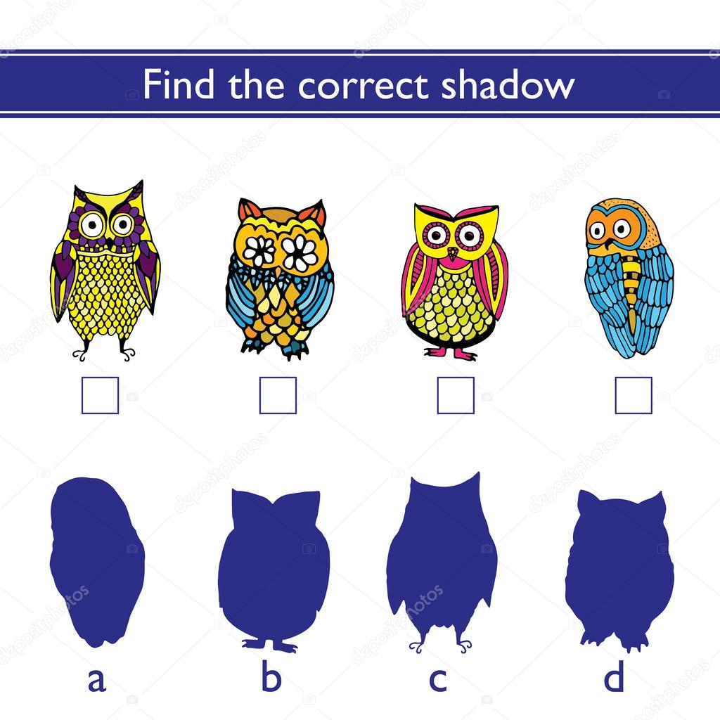 Find the correct shadow (owl).