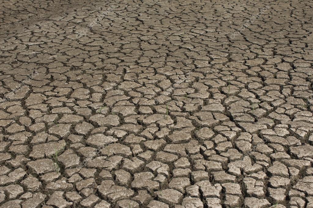 tierra seca agrietada llenando el marco como telón de fondo — Foto ...