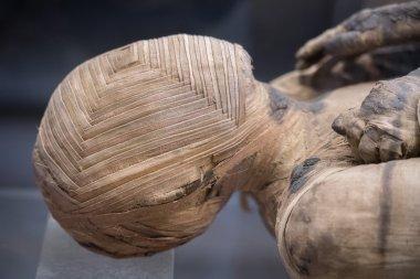 Egyptian mummy head close up