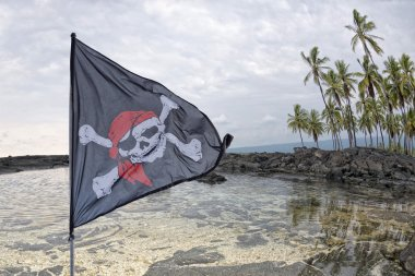 waving pirate flag jolly roger on tropical island background
