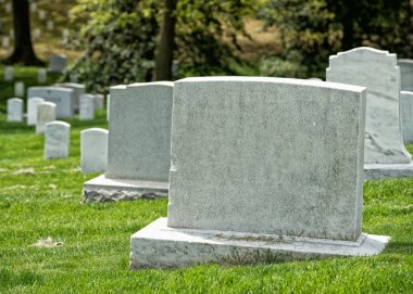 Arlington cemetery graveyard white tombstones stock vector