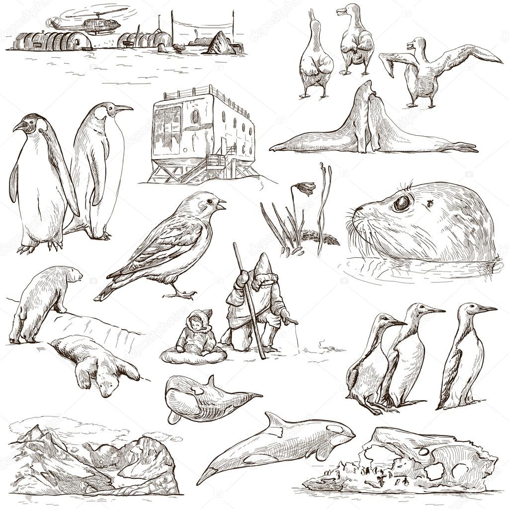 polar regions travel around the world freehand drawings u2014 stock