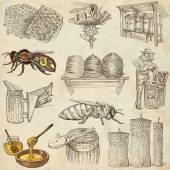 Fényképek Méhek, méhészet és méz - kézzel rajzolt ábrák