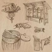 Fényképek méhek, méhészet és méz - kézzel rajzolt vector csomag 7