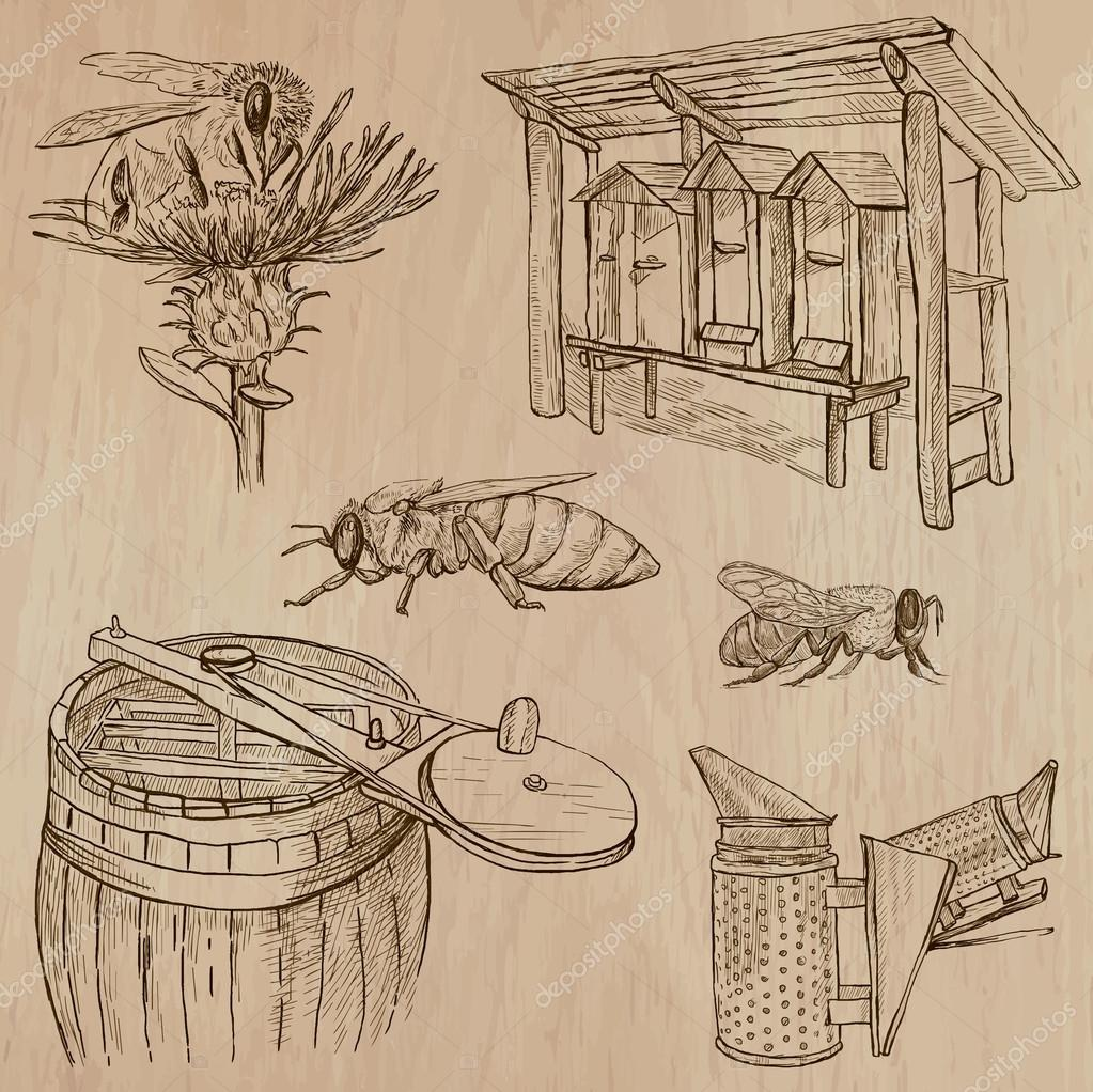 bees, beekeeping and honey - hand drawn vector pack 7
