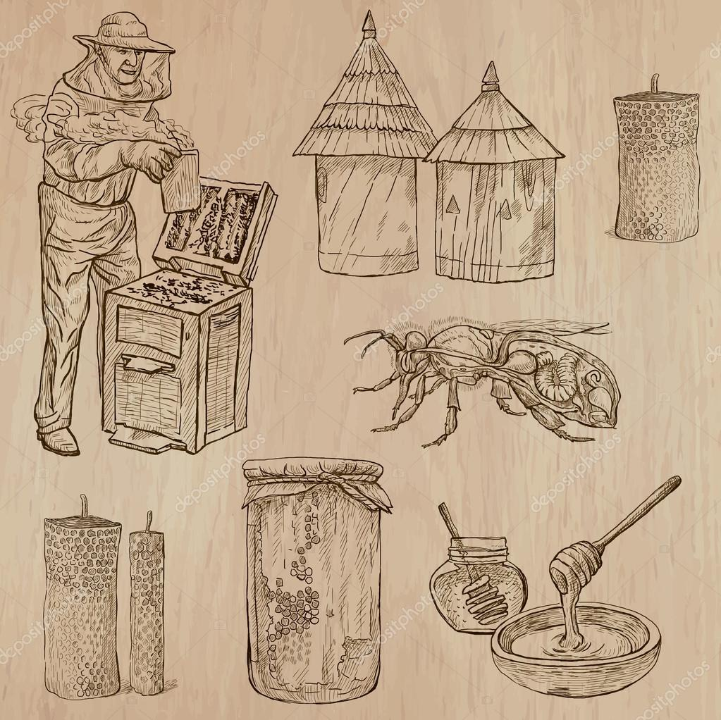 bees, beekeeping and honey - hand drawn vector pack 9