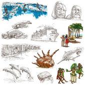Fotografie hawaii - handgezeichnete Illustrationen in voller Größe auf weiß