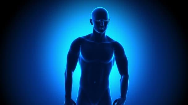 Magen Schmerzen - Magensäure - Reflux