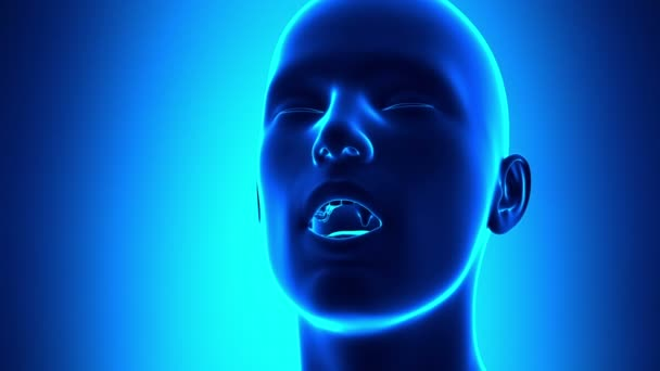 Flu - Cold Virus - Sneezing Human Anatomy