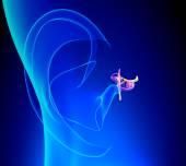 Vnitřní ucho detailní anatomie s boltce na modrém pozadí