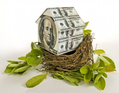Residential Nest Egg House Money House