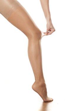Female leg in stockings