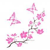 Fényképek gally cseresznye virágok